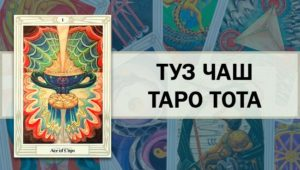 Значение и толкование аркана Таро Туз Чаш в разных сферах
